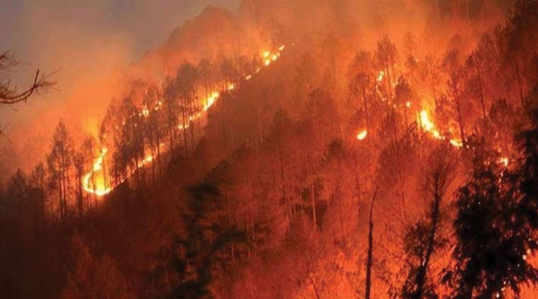 forest fire, mountains fire, Himalayas, Himalayas forest fire, Uttarakhand forest fire, Burning forest lands, himachal pradesh forest fire, environment news, Indian express