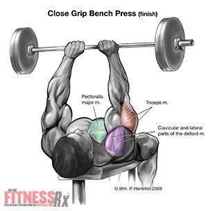 revolutionize  chest  arms  close grip