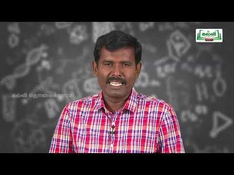 6th Science நமது சுற்றுச்சூழல் அலகு 1 Kalvi TV