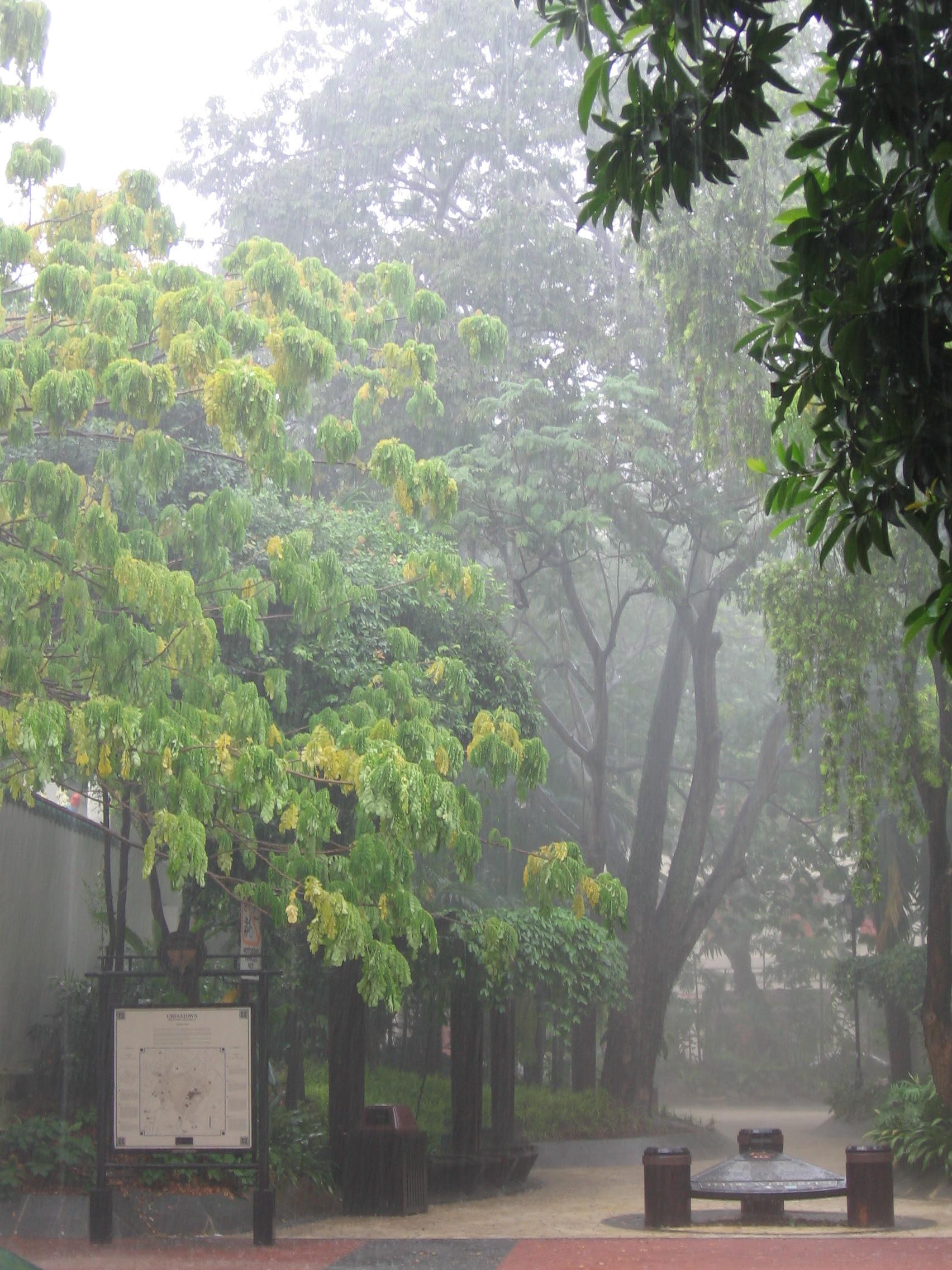Las tormentas vespertinas se producen con frecuencia en Singapur, que tiene un clima tropical húmedo.