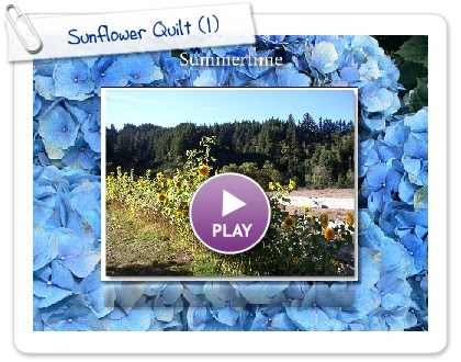 Click to play this Smilebox slideshow: Sunflower Quilt
