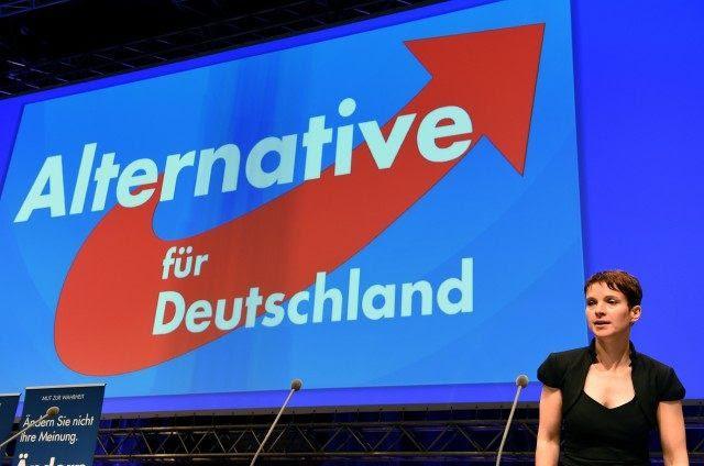 Risultati immagini per Afd germany