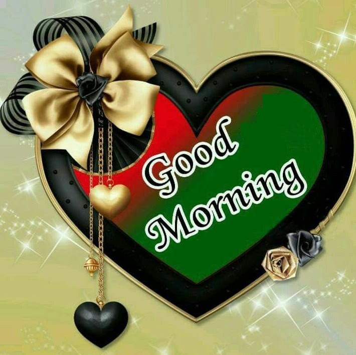 Most Popular Good Morning My Love Pictures Images With Flowers