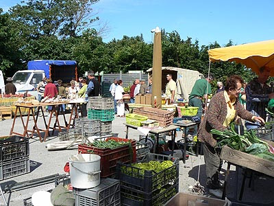 marché de petit palais 2.jpg