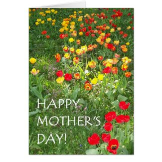 Mother's Day Card - 'Tulips'