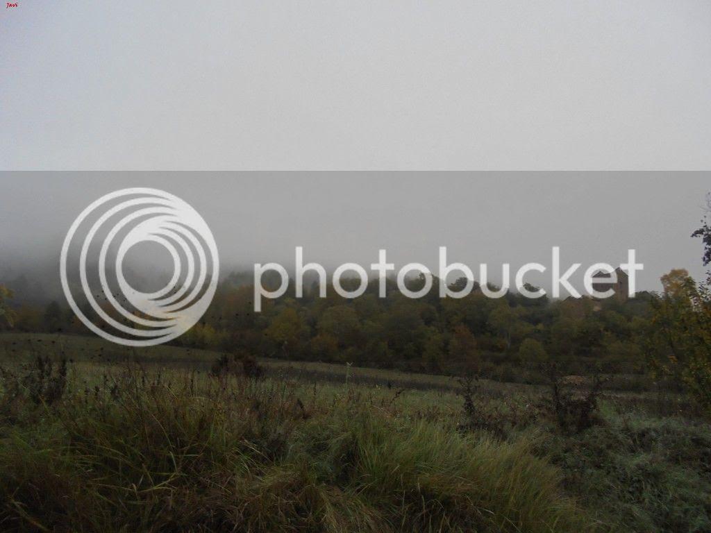 photo BACHIMALA - CULFREDAS 11-10-15 002_zpsvtqdiiyz.jpg