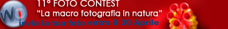 WinInizio - 10° FotoContest - 'il Lavoro'