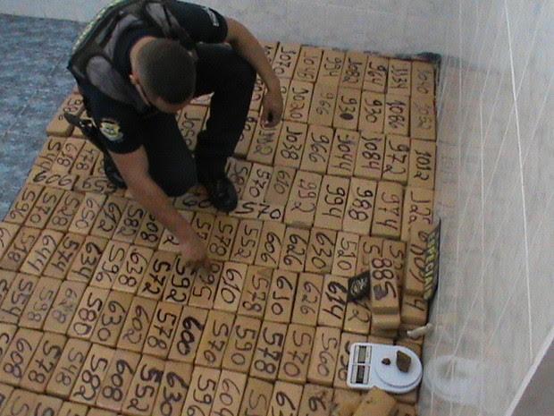 Guarda Civil contando o entorpecente apreendido em Limeira (Foto: Divulgação/Guarda Municipal Limeira)