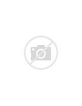Service Invoice Template Pictures