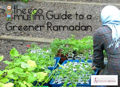 The Eco Muslim Guide To A Greener Ramadan