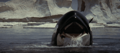 720full-orca%25253A-the-killer-whale-screenshot