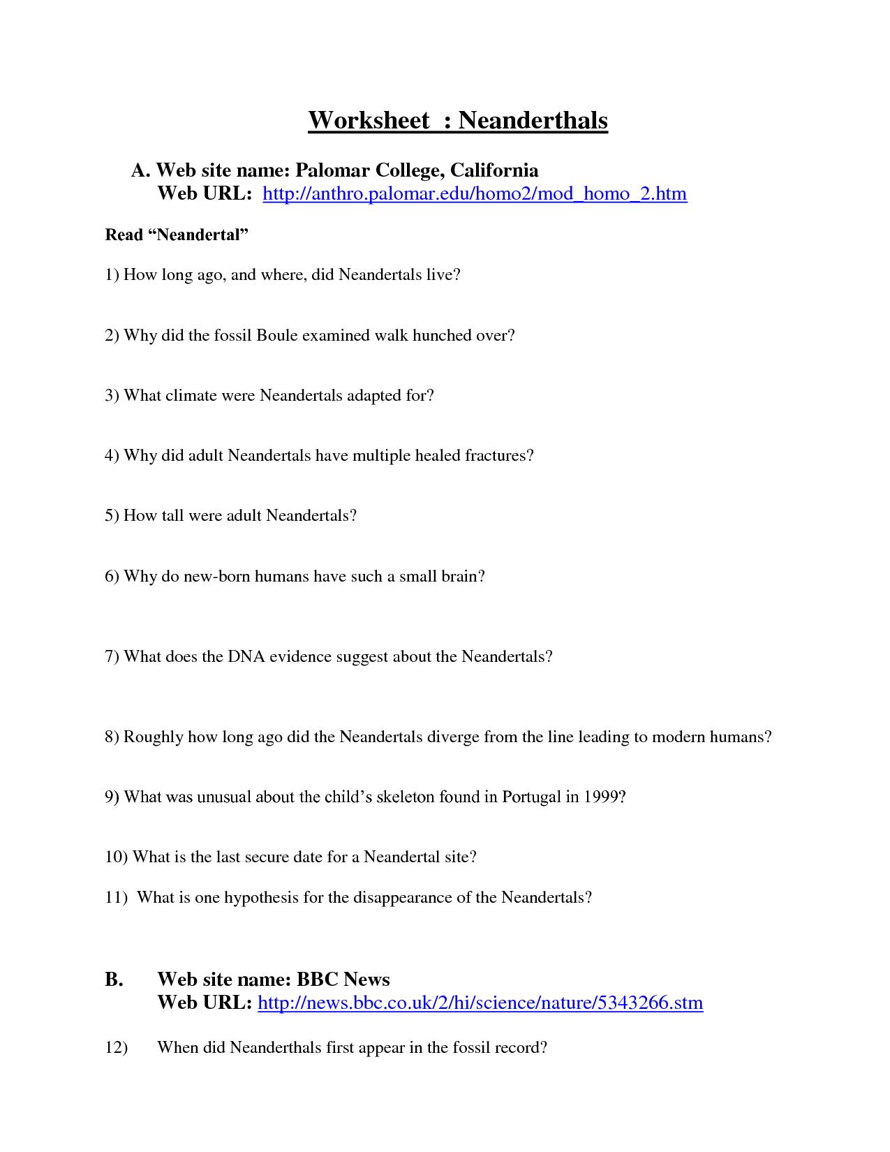 16 Best Images of Evidence Of Evolution Worksheet Answers  Evidence of Evolution Worksheet