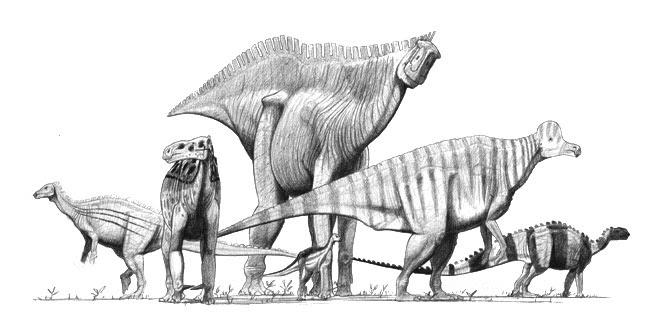 File:Ornithopods jconway.jpg