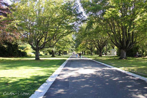 Rose Garden Invercargill Nzealand_4