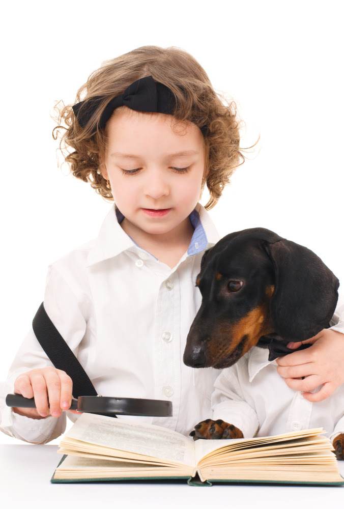 Reading to Puppies & Other Pet Therapy Remedies | American ...