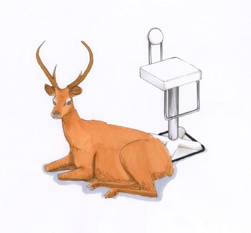 Birillo Designed by Joe Colombo Size:W480xD520xH1070/SH770 Specification:Leather + Glass Fiber Joe Colombo:http://bit.ly/oRWkms zanotta:http://bit.ly/qASo85 yamagiwa:http://bit.ly/nnimjz