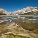 Ice and Pollen in Tenaya Lake