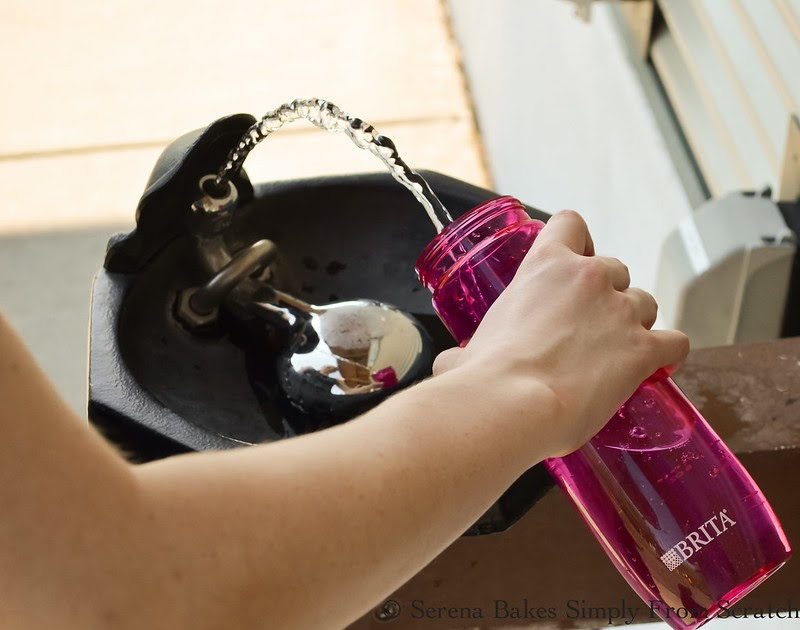 Brita Hard Sided Water Bottle Filter My Favorite Tips And Tricks For Keeping Hydrated - Serena ...