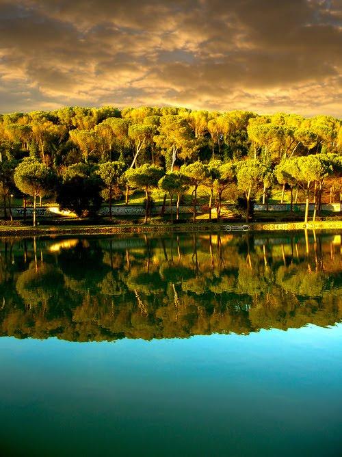 Reflection, Villa Ada, Rome, Italy
