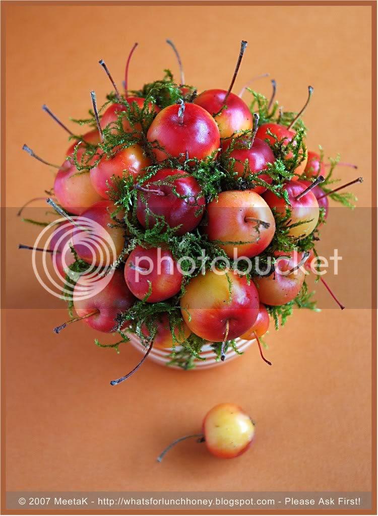 Apple Bouquet (01) by MeetaK