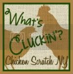 Chicken Scratch NY
