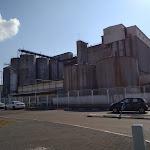 מזהמים ומשלמים: המשרד להגנת הסביבה הטיל עיצום כספי בסך 2,108,870 שקל על מפעל מכון תערובת לבעלי חיים במפרץ חיפה - חי פה - חדשות חיפה