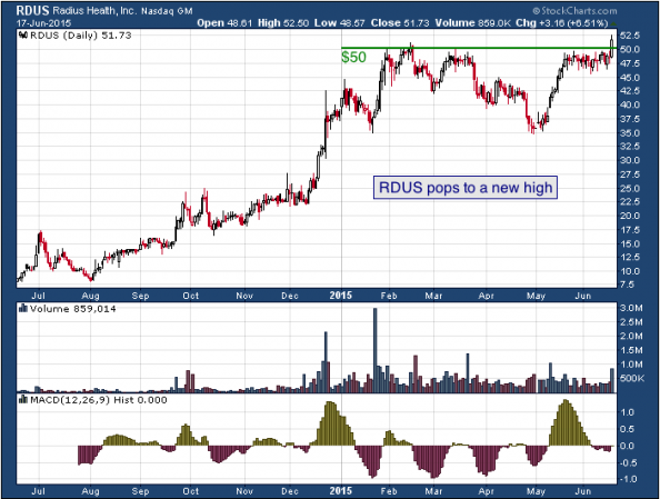 1-year chart of Radius (NASDAQ: RDUS)