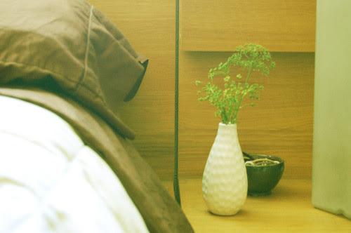 flowery herbs, bedside