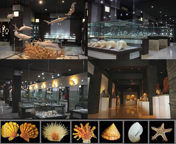 Location Map of Bali Shell Museum Kuta Bali island,Bali Shell Museum Kuta Bali island Location Map,Bali Shell Museum Kuta Bali island Accommodation Attractions hotels photo map