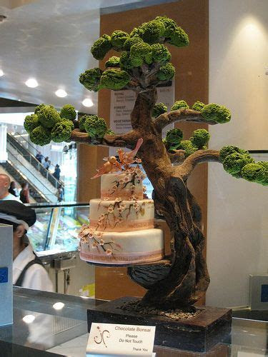 A chocolate bonsai tree holds a beautiful cake creation