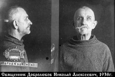 Мой двоюродный дед - священник Николай Добролюбов.