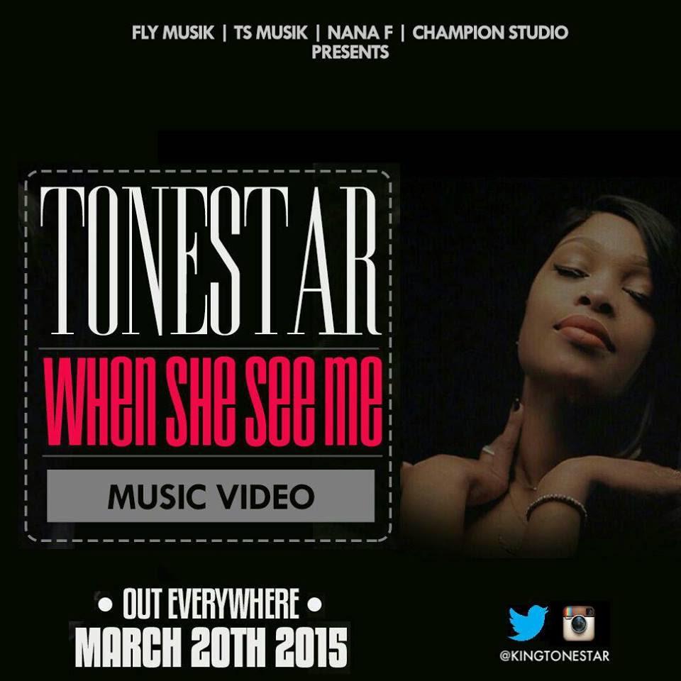 tonestar video art (1)