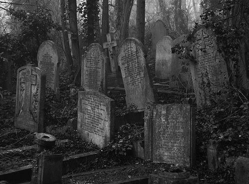 blackoutraven:  Contact the Dead  No need to contact the dead, since they will soon be rising. They will be contacting you. THE DEAD GAME by Susanne Leist