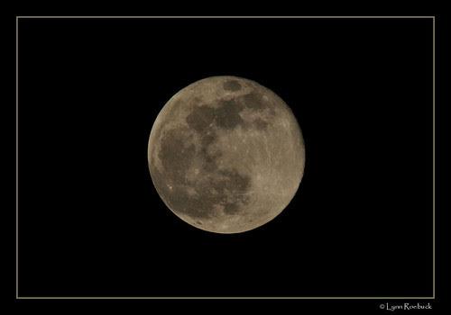 Biggest Full Moon of 2008! by Lynn  Roebuck.