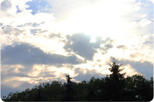 sky - web.jpg