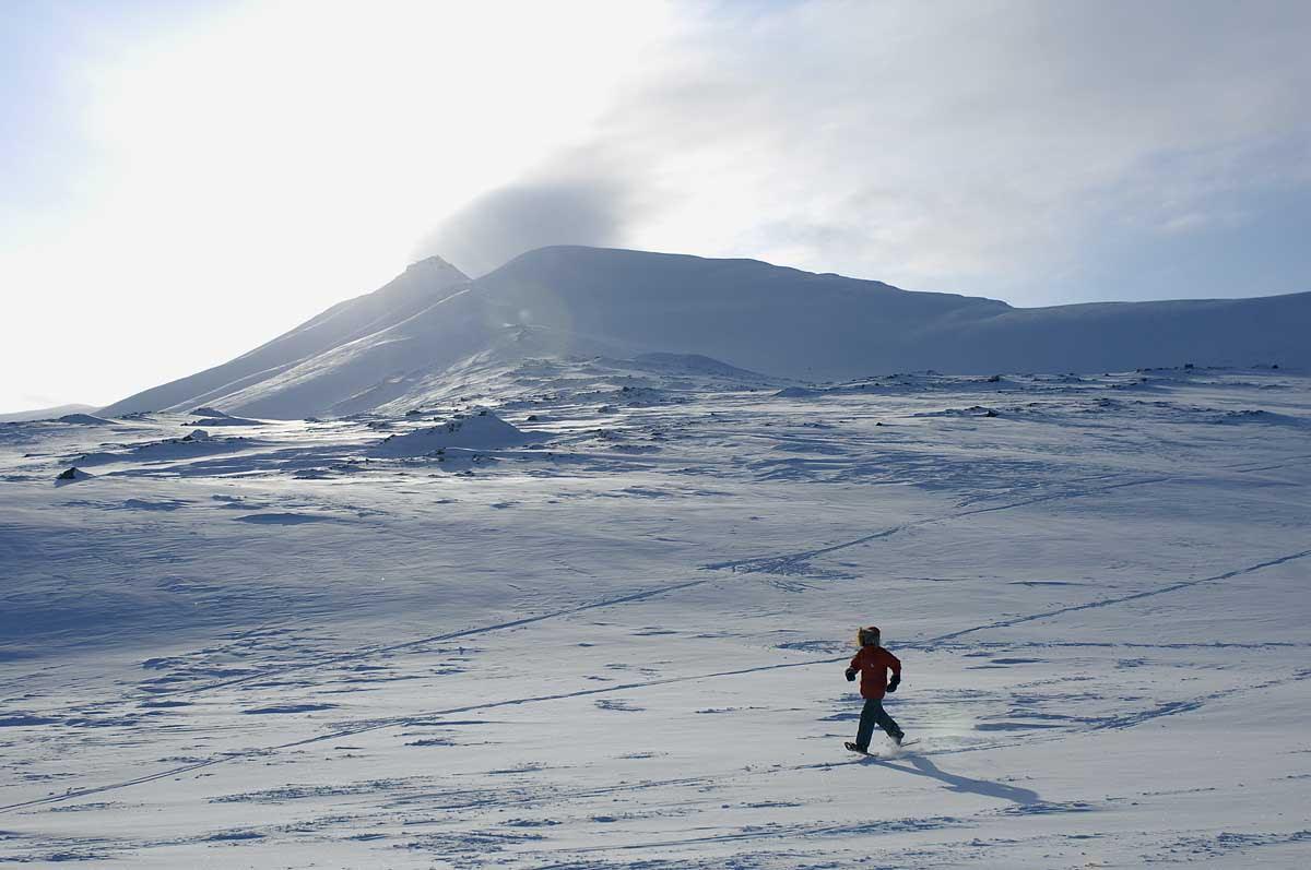 North Pole marathon 2008