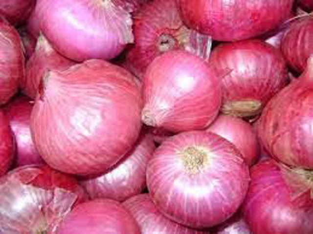 Government allocated Rs 47.3 million to purchase big onions