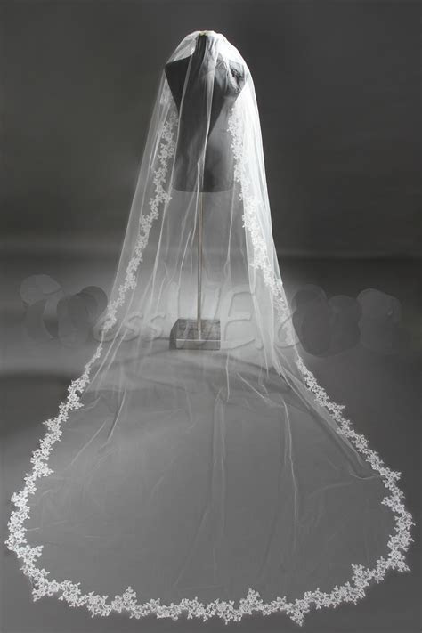 2017 Long Veil With Embroidery 3 Meters Lace Applique Edge