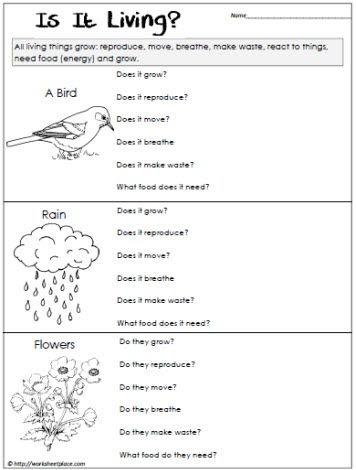 Characteristics Of Life Worksheet Pdf Answers Key   worksheet