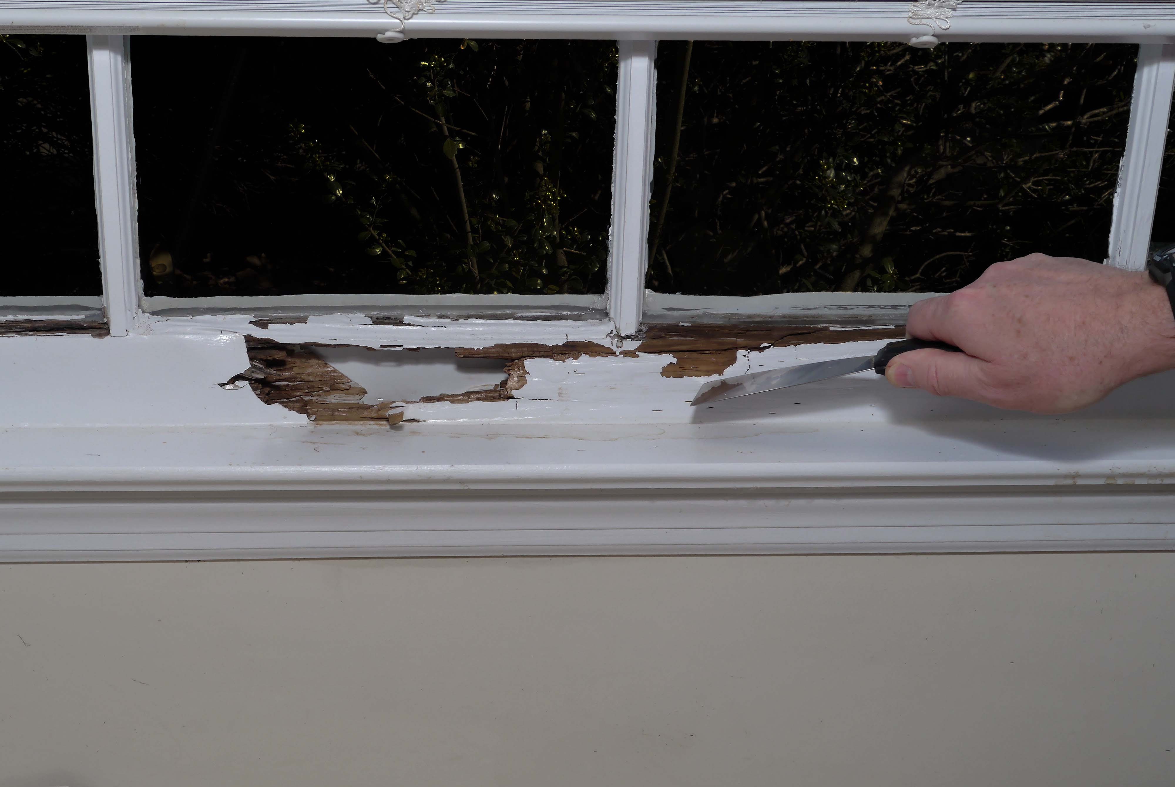 Cost To Replace Rotted Window Sill Mycoffeepot Org