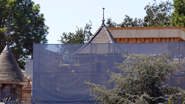 Disneyland Resort, Disneyland, Fantasyland, Castle, Safety Rail