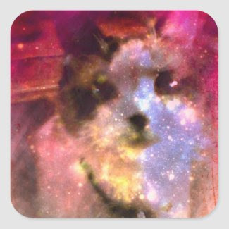 snowshoe aurora borealis kitty square sticker