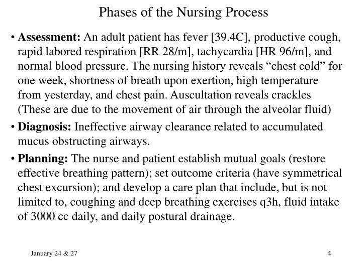 PPT - The Nursing Process PowerPoint Presentation - ID:923206