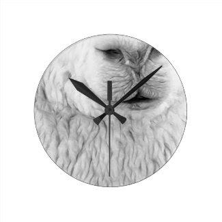 Alpaca White Round Wall Clock