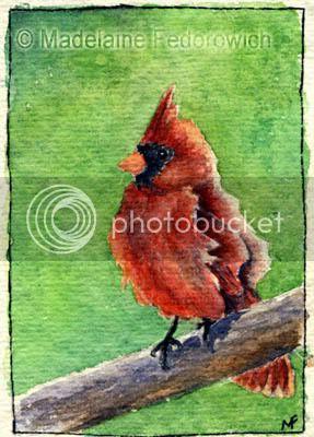 Cardinal Bird ACEO