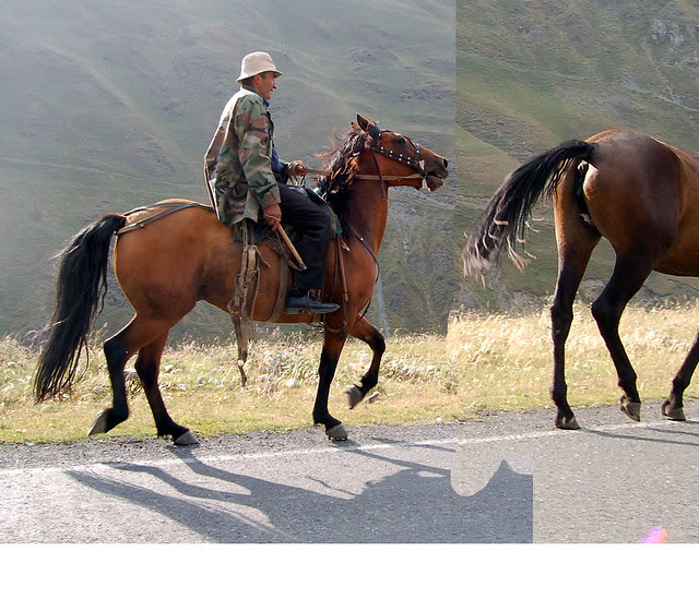 simple-horse
