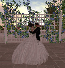 Thorne-Darwin Wedding - First Dance