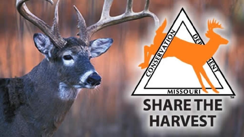 Image result for share deer