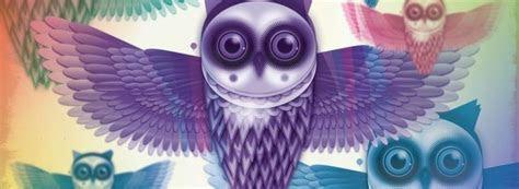 owl facebook cover facebook covers  cute owls