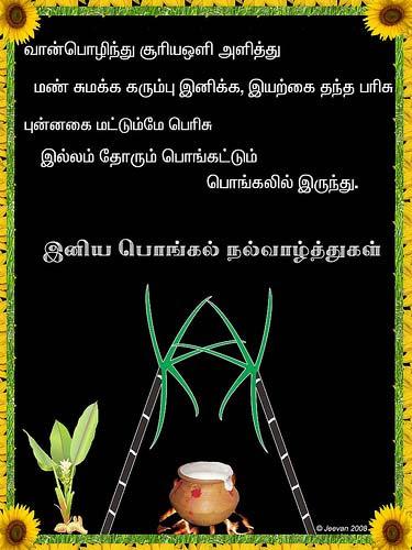 Pongal Greetings, Pongal Orkut Scraps, Graphics
